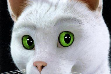 Ramsès le Chat